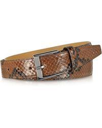 FORZIERI - Brown Python Leather Men's Belt - Lyst