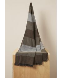 French Connection - Helma Striped Scarf - Lyst