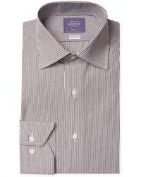 Near North - Striped Trim Fit Dress Shirt - Lyst