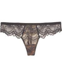 Blush Lingerie - Colorblock Mesh Lace Thong - Lyst