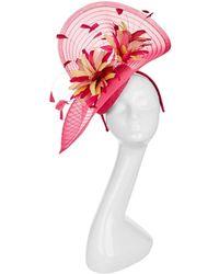 Peter Bettley - Netting And Flower Trim Pillbox Fascinator - Lyst