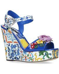 Dolce & Gabbana - Floral Belucci Wedge Sandals 120 - Lyst