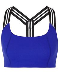 Free People - Zephyr Cobalt Stretch-jersey Bra Top - Lyst