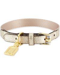 Henri Bendel - Influencer Pet Collar - Lyst