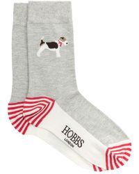 Hobbs - Pretty Poppy Sock - Lyst