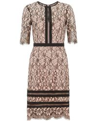 Hobbs - Penny Lace Sheath Dress - Lyst