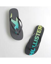 Hollister | Logo Flip Flops | Lyst