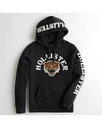 Hollister - Guys Leopard Applique Hoodie From Hollister - Lyst