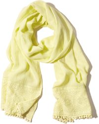 Hollister - Embroidered Scarf - Lyst