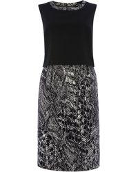 Ellen Tracy - Sleeveless Popover Dress - Lyst