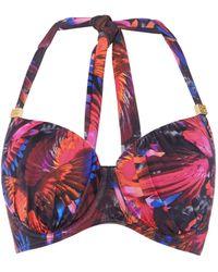 Biba - Cup Size Rio Bikini Top - Lyst