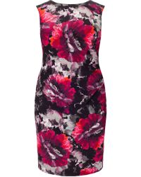 b3630375959 House of Fraser · Studio 8 - Plus Size Pippa Print Dress - Lyst