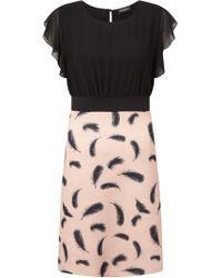 James Lakeland - Feather Print Dress - Lyst