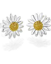 Daisy London | E2005 Ladies Earrings | Lyst