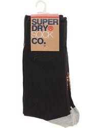 Superdry - Black Pack Of 4 Socks - Lyst