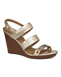 Jack Rogers - Arden Wedge - Lyst