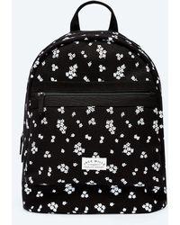 Jack Wills - Portbury Backpack - Lyst