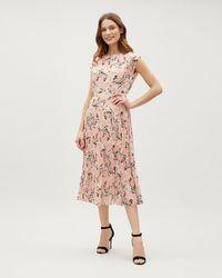 Jaeger - Floral Print Sunray Pleated Dress - Lyst