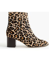 J.Crew - Ankle Boots In Leopard Calf Hair - Lyst