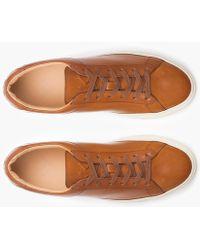 J.Crew - Unisex Koio Capri Castagna Sneakers - Lyst