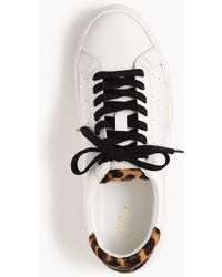 a8434a56cf J.Crew - Saturday Trainers With Leopard Calf Hair Detail - Lyst