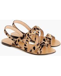 J.Crew - Cross-strap Sandals In Leopard Calf Hair - Lyst
