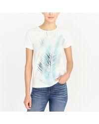 J.Crew - Palm Leaf Collector T-shirt - Lyst