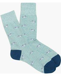 J.Crew - Swordfish Socks - Lyst