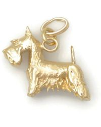 Donna Pizarro Designs 14kt Yellow Gold Jack Russell Terrier Charm Rgazp4HIB7