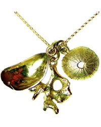 Beryl Dingemans Jewellery - Gold Chintsa Shell Necklace - Lyst
