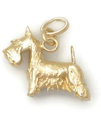 Donna Pizarro Designs 14kt Yellow Gold Bull Terrier Charm