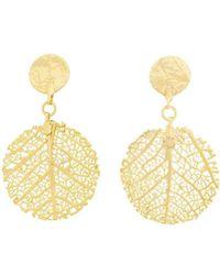 Amazona Secrets - 18kt Gold Savannah Leaf Earrings - Lyst