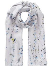 Jigsaw - Floral Strands Silk Scarf - Lyst