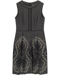 Precis Petite - By Jeff Banks Jacquard Dress - Lyst