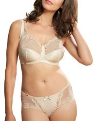 Royce | Lace Detail Full Cup 1143 Bra | Lyst