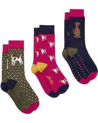 Joules - Brill Bamboo Dog Print Ankle Socks - Lyst