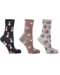 John Lewis - Woodland Animal Print Ankle Socks - Lyst