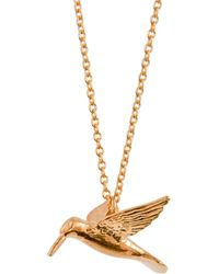 Alex Monroe - Hummingbird Pendant Necklace - Lyst
