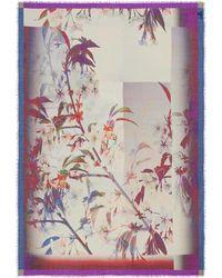 Franco Ferrari - 'tarth Bird' Floral Print Wool-silk Herringbone Scarf - Lyst