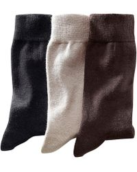 La Redoute - Pack Of 3 Pairs Of Plain Cotton Rich Socks - Lyst