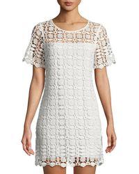 Laundry by Shelli Segal - Venise Crochet Illusion Shift Dress - Lyst