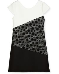 Zoe - Contrast Tricolor Polka-dot Dress - Lyst