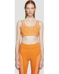 Fendi - Ffreedom Sports Bra In Orange - Lyst