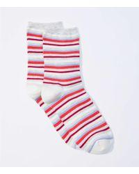 LOFT - Striped Crew Socks - Lyst