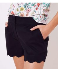 LOFT - Scalloped Shorts With 4 Inch Inseam - Lyst