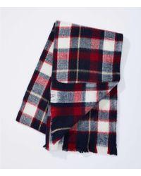 LOFT - Plaid Blanket Scarf - Lyst