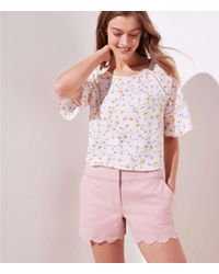 LOFT Scalloped Shorts With 4 Inch Inseam - Pink