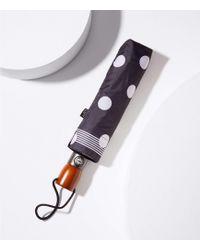 LOFT - Bordered Polka Dot Umbrella - Lyst