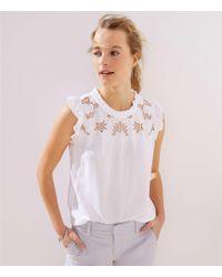 LOFT - Floral Lace Yoke Ruffle Shell - Lyst