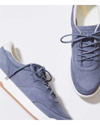 LOFT - Keds Match Point Nubuck Sneakers - Lyst